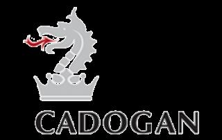 codogan logo